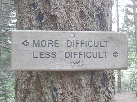 Sign on tree - More difficult - less difficult
